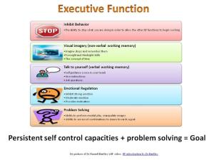 ExecutiveFuncion