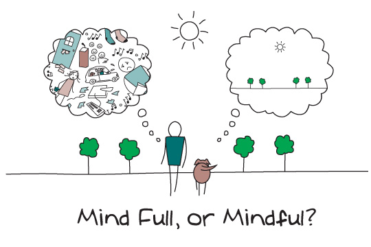 20121108-mindfulness