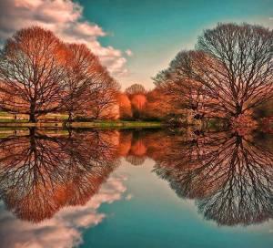 f22-131107-georgeous-foliage-reflection