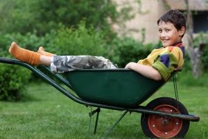 funny boy in garden wheelbarrow